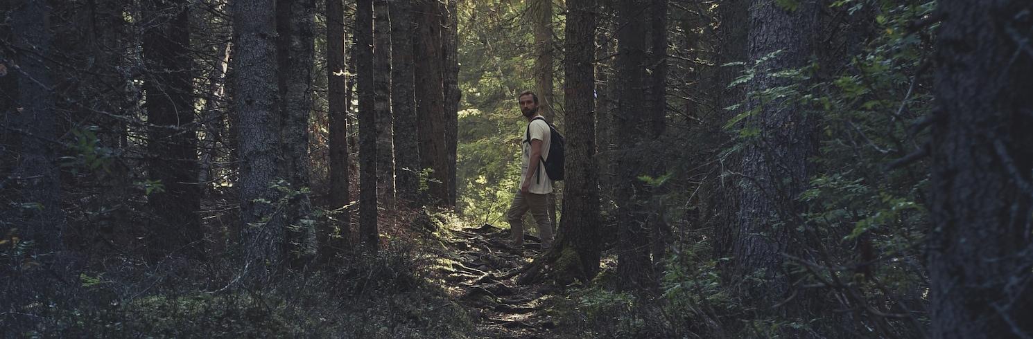 Tavelsjö, Suecia