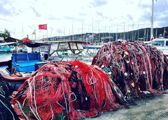 Sigacık, Turki