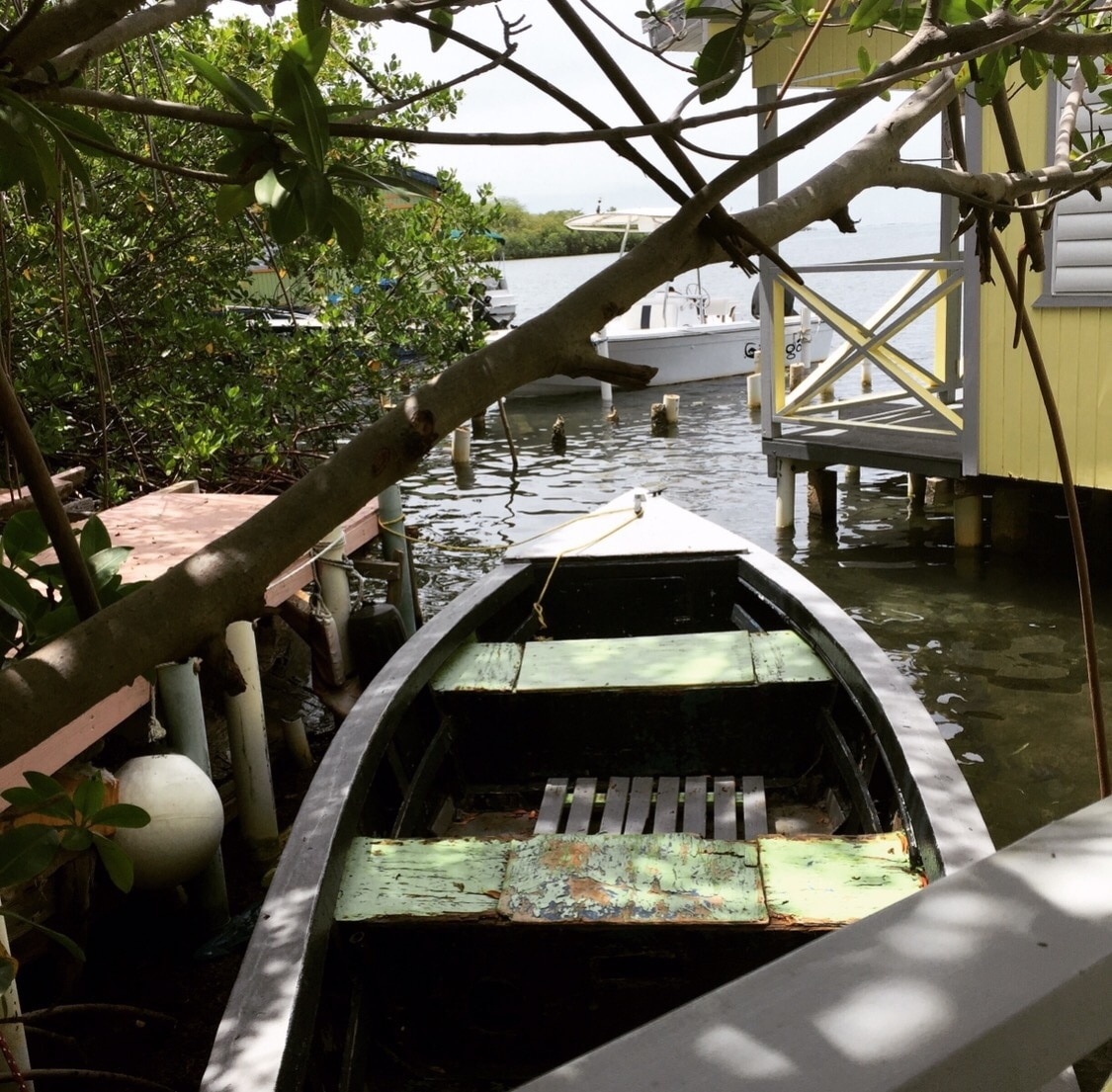 La Parguera, Lajas, Puerto Rico