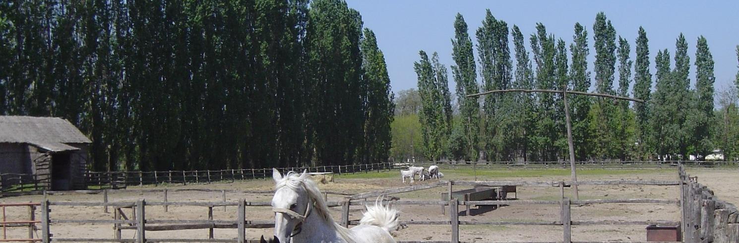 Lajosmizse, Ungern