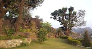 Гора Abu