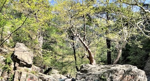 Kazdağı National Park