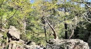 Parque Nacional Kazdağı