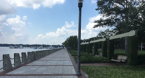 Henry C. Chambers Waterfront Park (dabas parks)