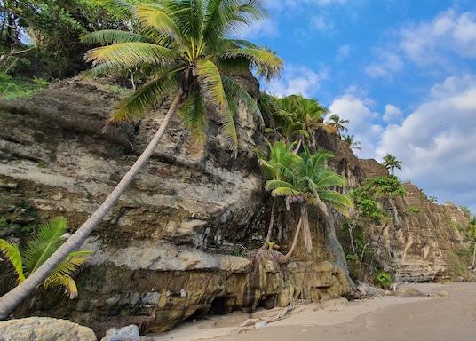 Tango Mar, Kosta Rika