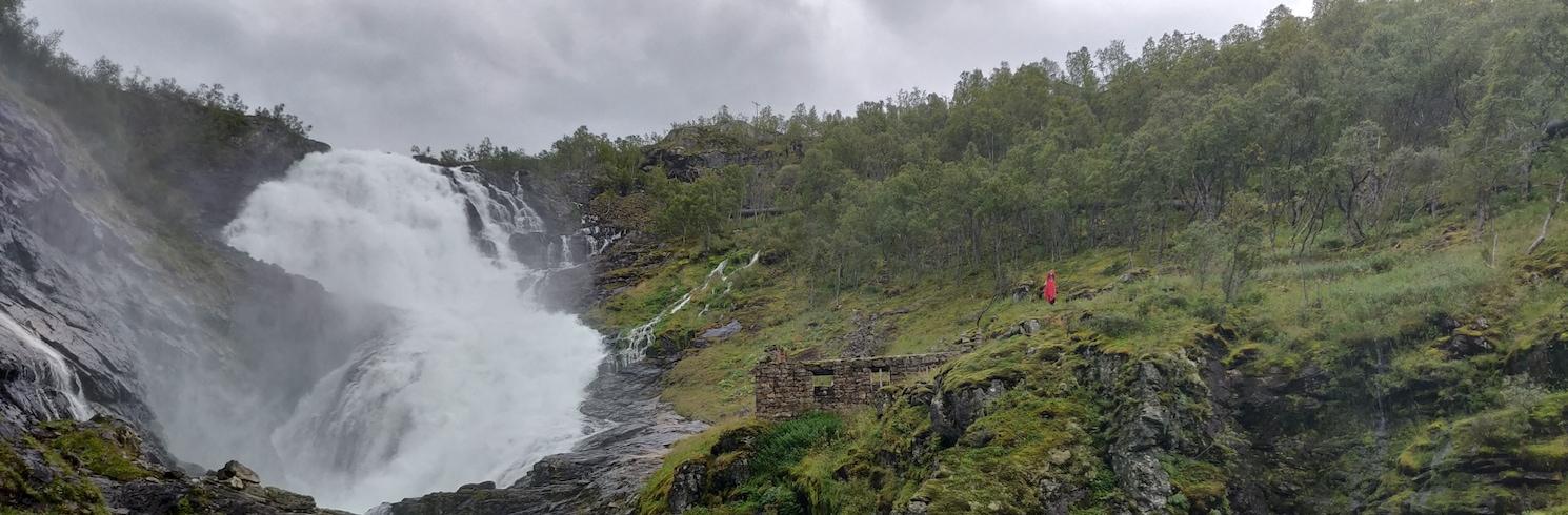 Myrdal, Nórsko