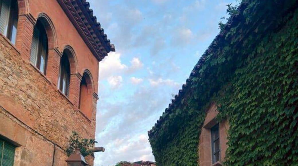 Photo by alusoare.com