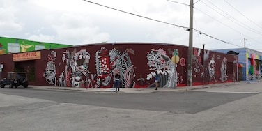 Miami street art - wall paintings