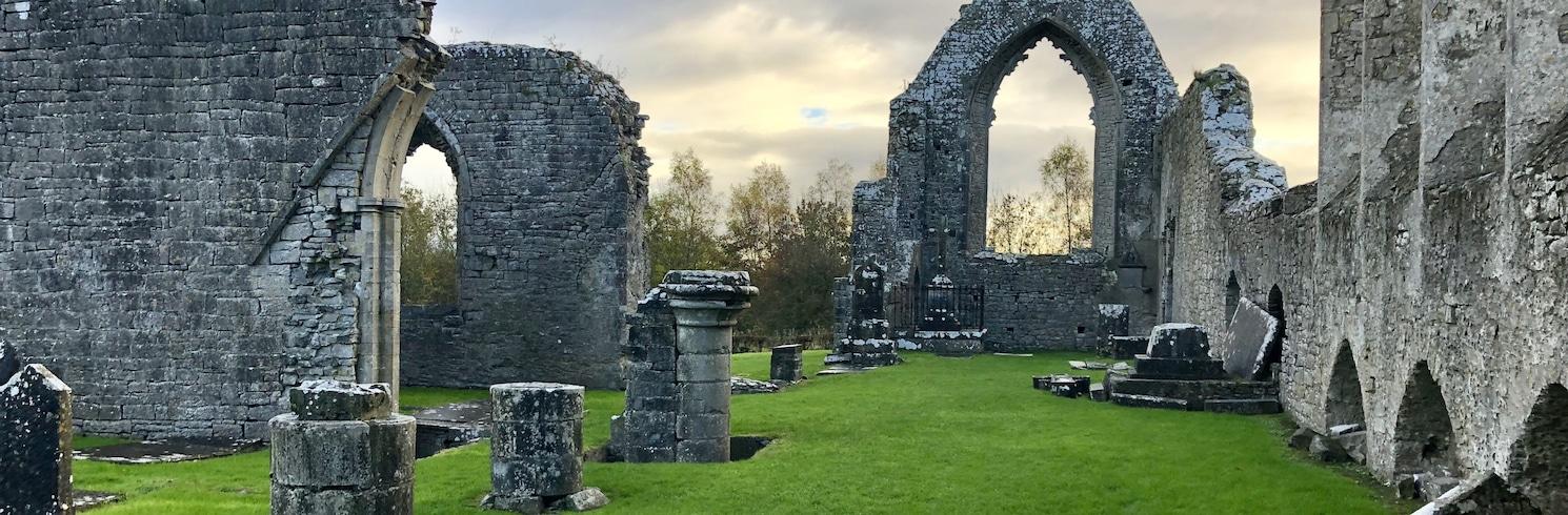 Графство Роскоммон, Ирландия