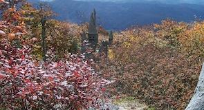 Resor Beech Mountain