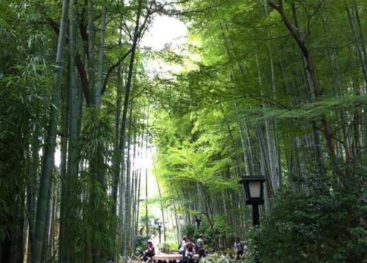 Shuzenji, Japón