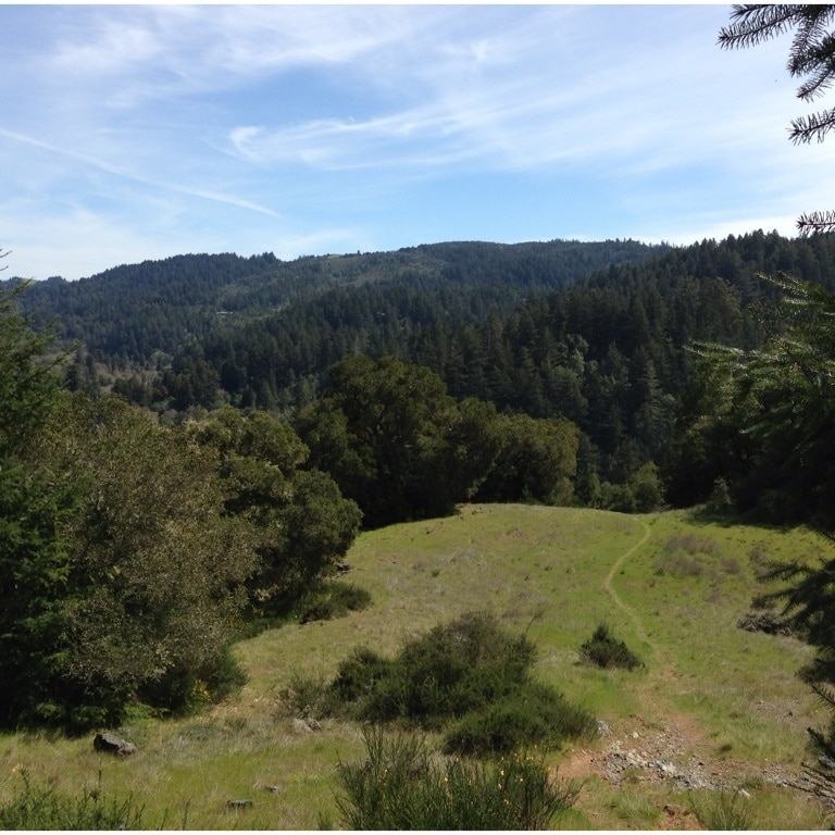 Lagunitas-Forest Knolls, California, United States of America