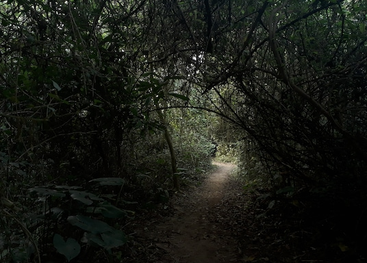 Narendrapur, 인도