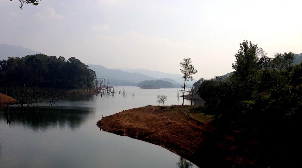 Photo by Sachendra Yadav