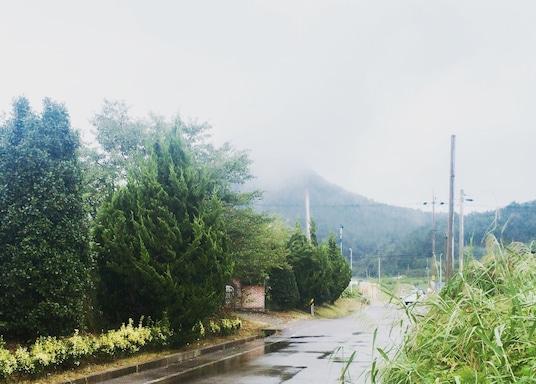 高興, 韓國
