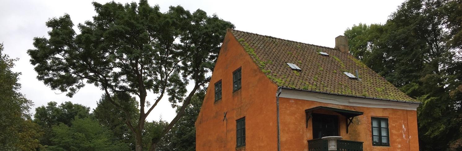 Kongens Lyngby, Taani
