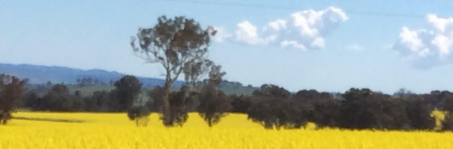 Lyndhurst, New South Wales, Australien