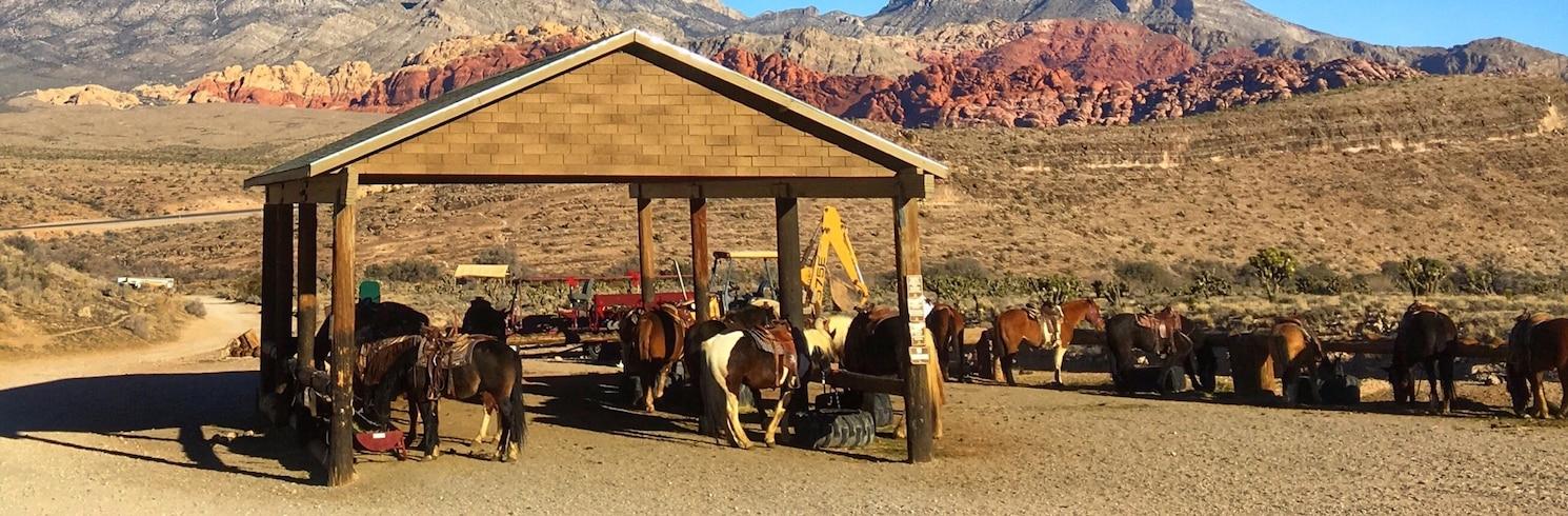 Summerlin South, Nevada, Verenigde Staten