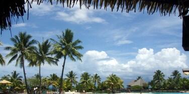 Faaa, Windward Islands, French Polynesia