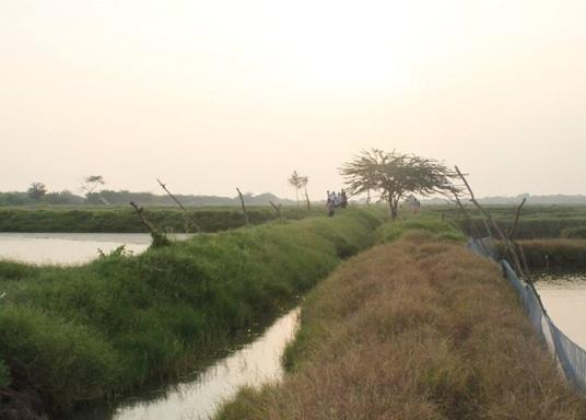 Guntur, Indie
