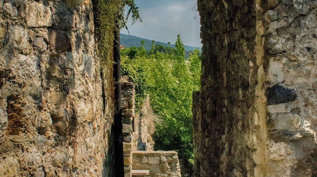 Foto de Travelholic Path