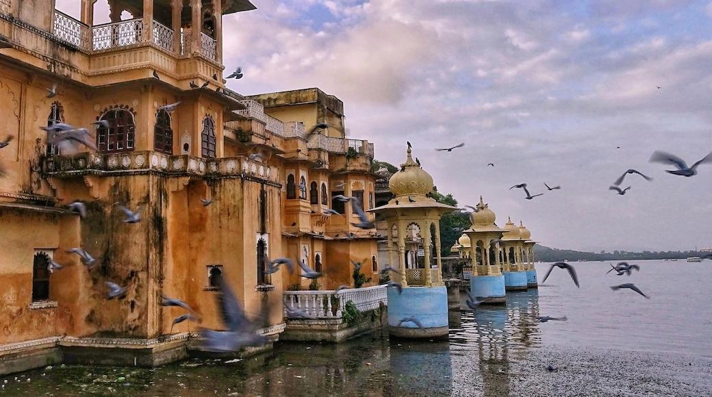 Photo by Poonam Gupta