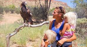 Park pustynny w Alice Springs