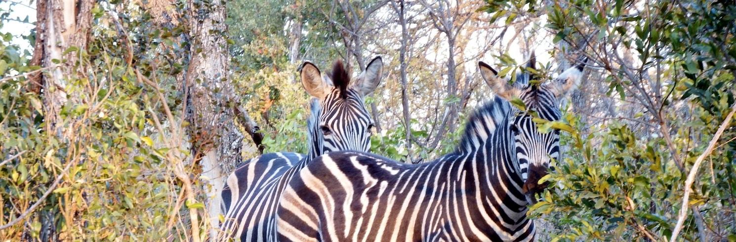 Hoedspruit, Sør-Afrika