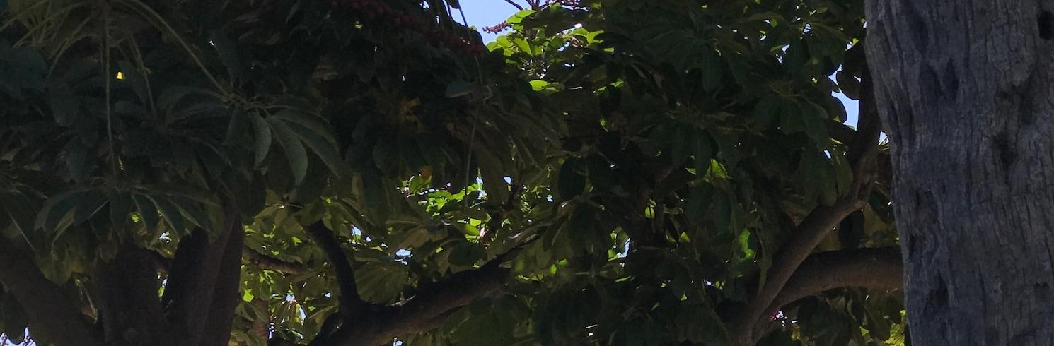 Honolulu, Hawaii, Amerika Syarikat