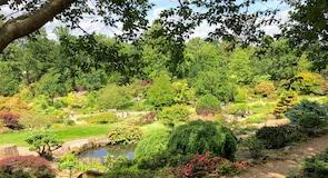RHS Garden Wisley (záhrada)