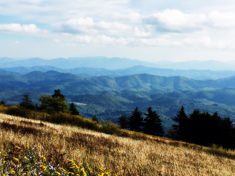 Mount Rogers National Recreation Area, Virginia, Verenigde Staten