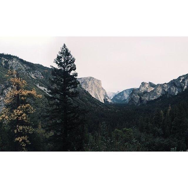 Yosemite West, Yosemite National Park, California, United States of America