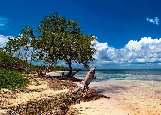 Santalusija, Kuba