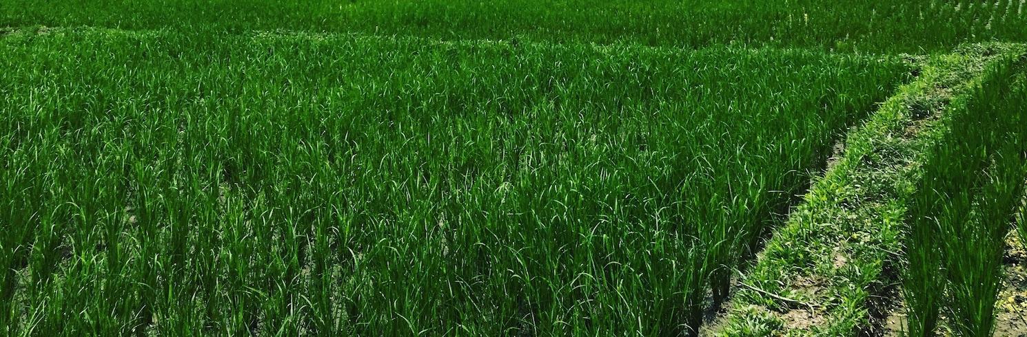 Lodtunduh, Endonezya