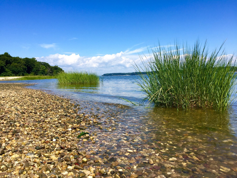 Oyster Bay, New York, United States of America