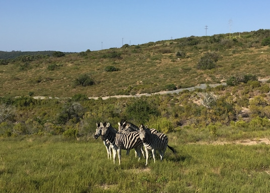 Great Kei, Sydafrika