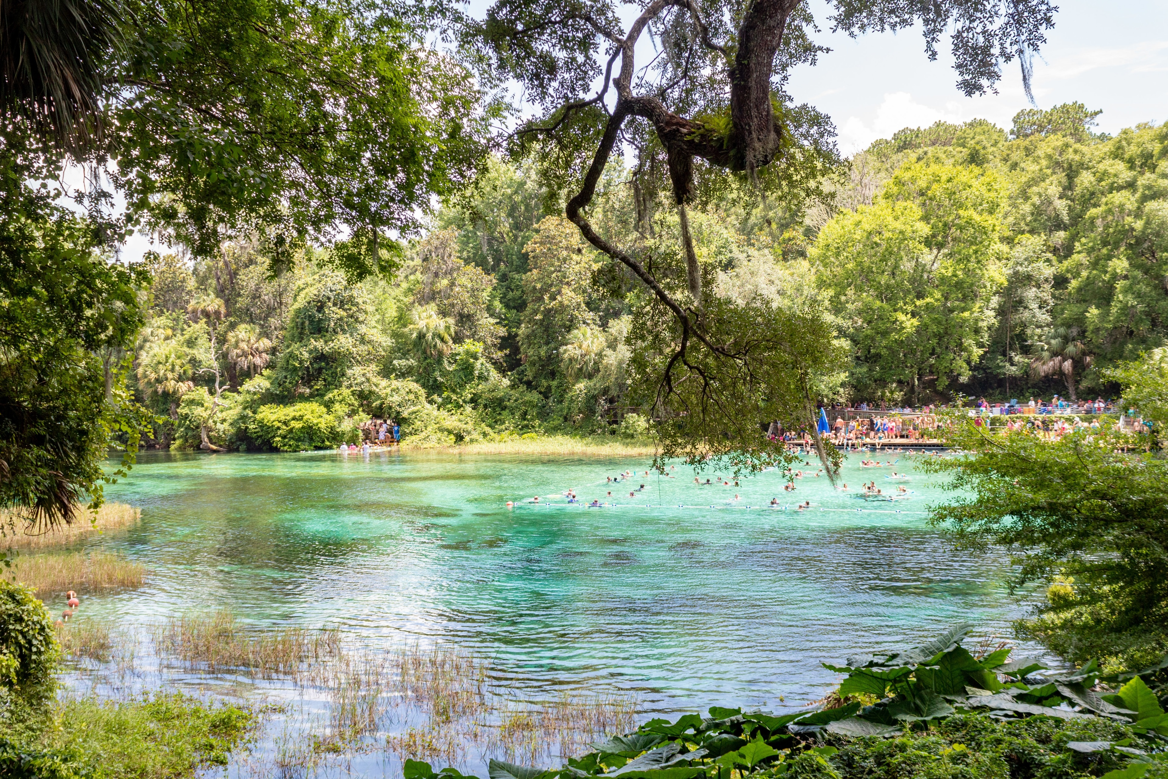 Dunnellon, Florida, United States of America