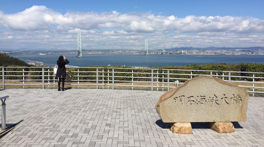 Photo by Yuki Kinoshita