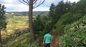 ساو غونسالو