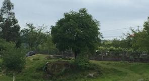 Природоохранная зона Корну-ду-Бику