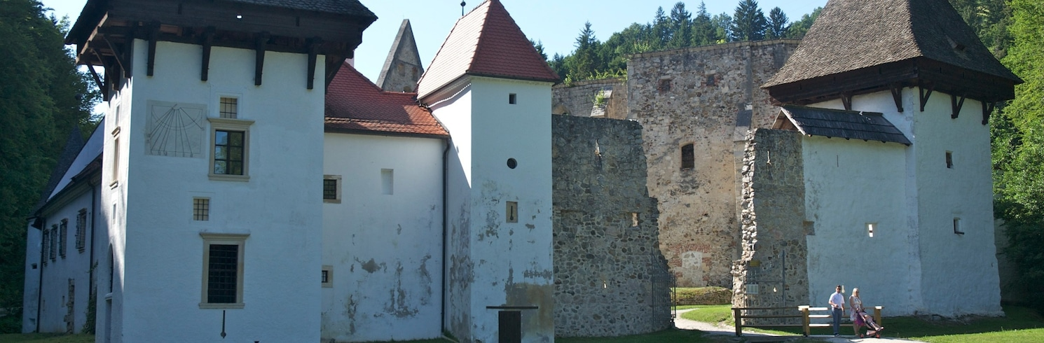 Slovenske Konjice, Slowenien