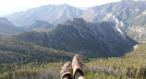 Mount Charleston Wilderness Area