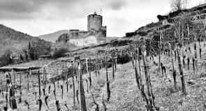 Kayserberg Castle