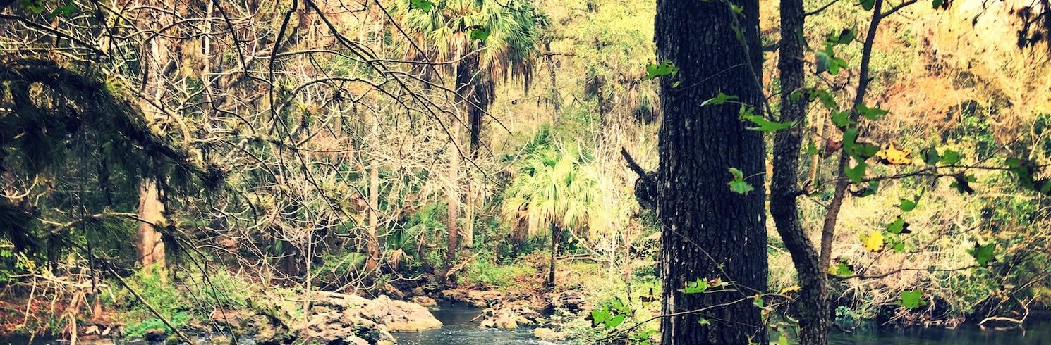 Thonotosassa, Florida, United States of America
