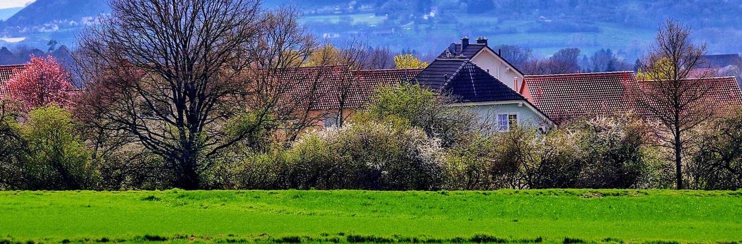 Amöneburg, Niemcy