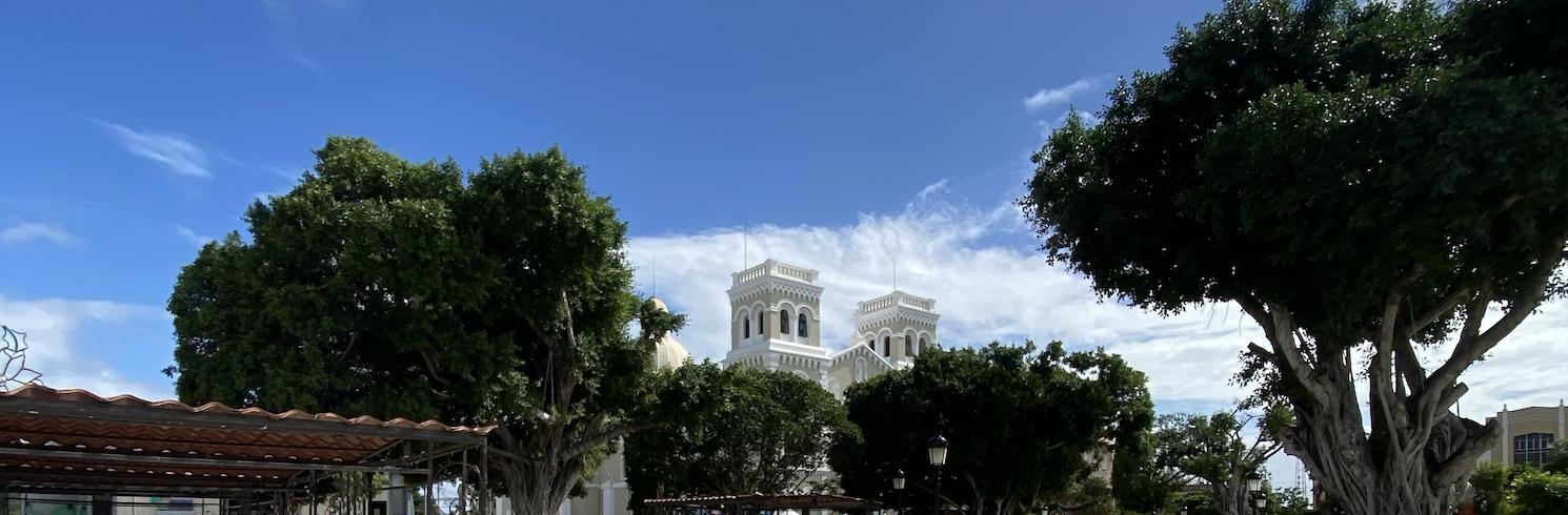 Gvajama, Puertoriko
