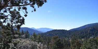 Almost any Vista Point going up to Big Bear, Angelus Oaks area, is super pretty. Great places to pull off and explore.