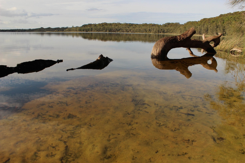 Myall Lake, New South Wales, Australië