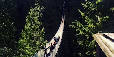 capilano+suspension+ bridge Vancouver