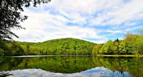 Parco Nazionale storico di Marsh-Billings-Rockefeller